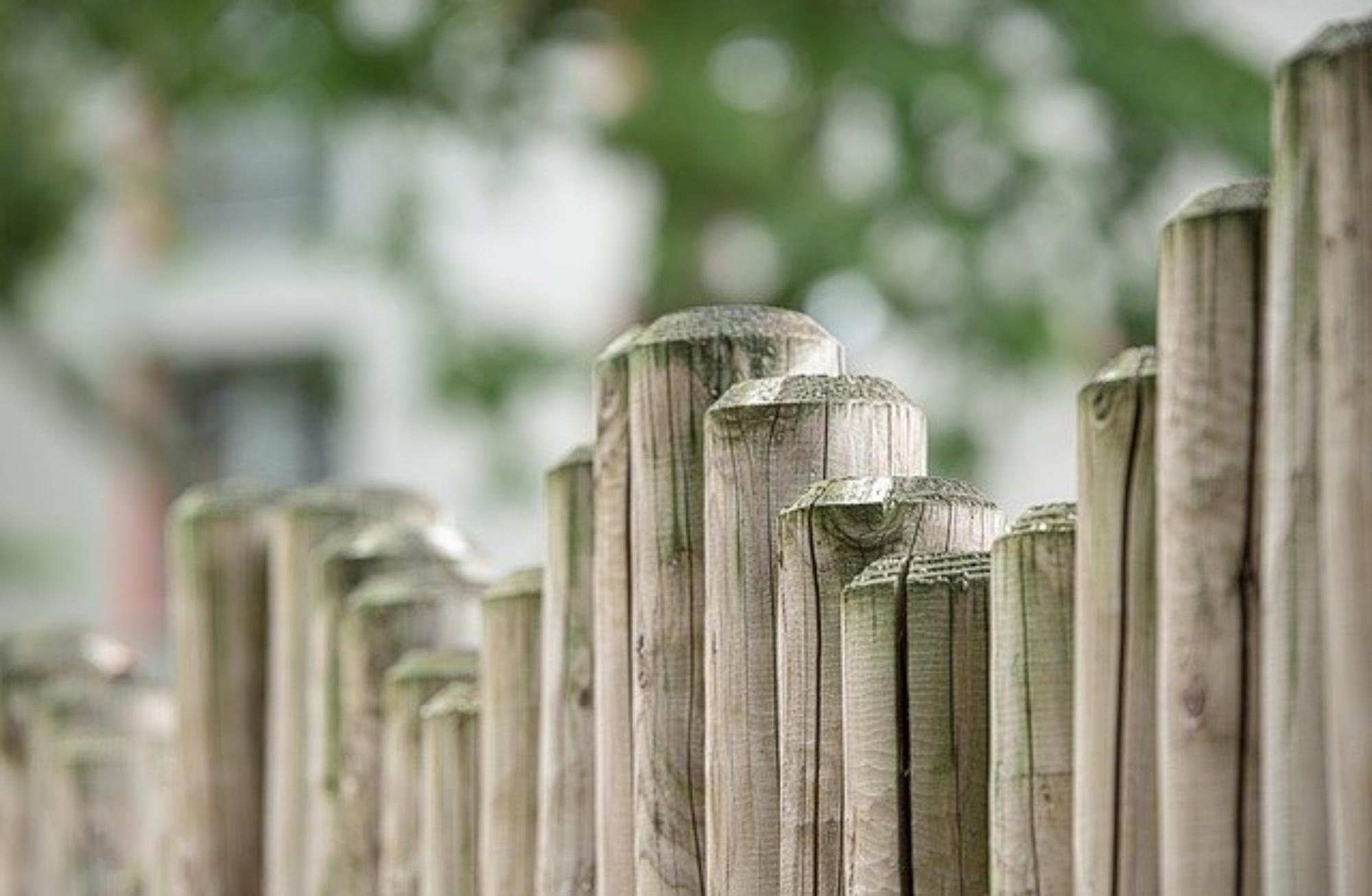 palisady ogrodowe